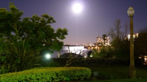 vollmond in rushcutters bay